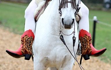 cowboy-stiefel-coryn-fashion